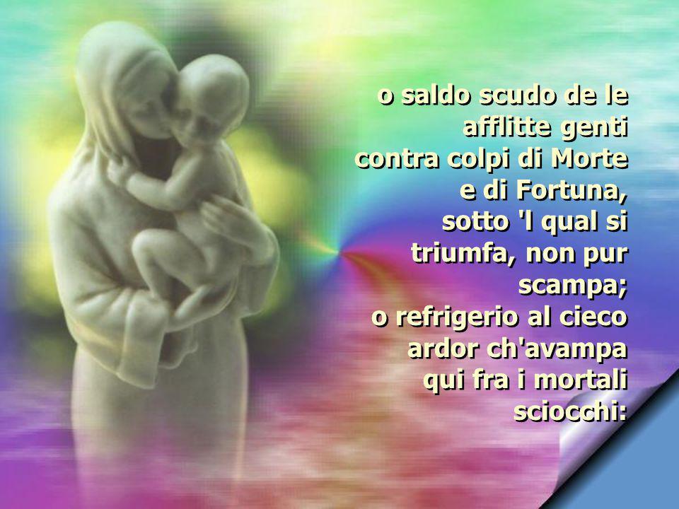 Vergine, quante lagrime ò già sparte, quante lusinghe e quanti preghi indarno, pur per mia pena e per mio grave danno.