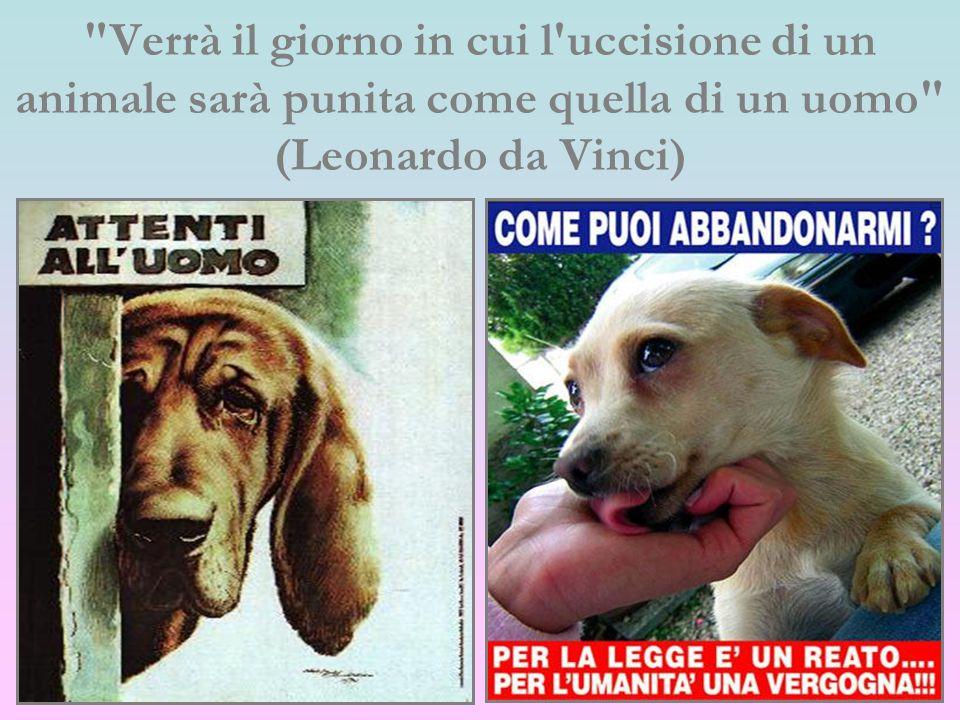 Verrà il giorno in cui l uccisione di un animale sarà punita come quella di un uomo (Leonardo da Vinci)
