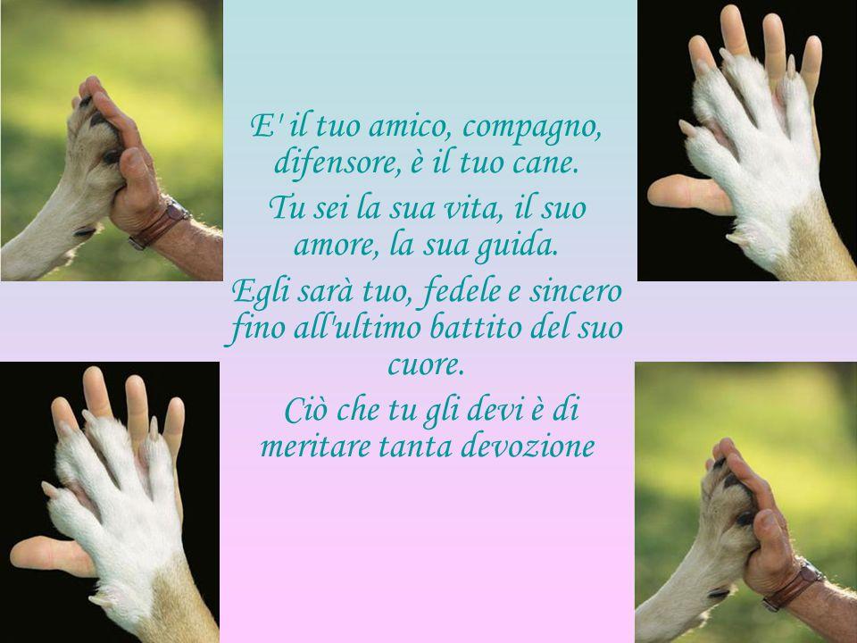 E' il tuo amico, compagno, difensore, è il tuo cane. Tu sei la sua vita, il suo amore, la sua guida. Egli sarà tuo, fedele e sincero fino all'ultimo b