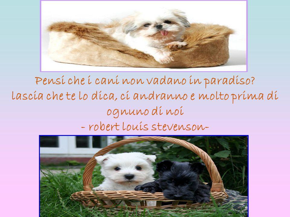 Pensi che i cani non vadano in paradiso? lascia che te lo dica, ci andranno e molto prima di ognuno di noi - robert louis stevenson-