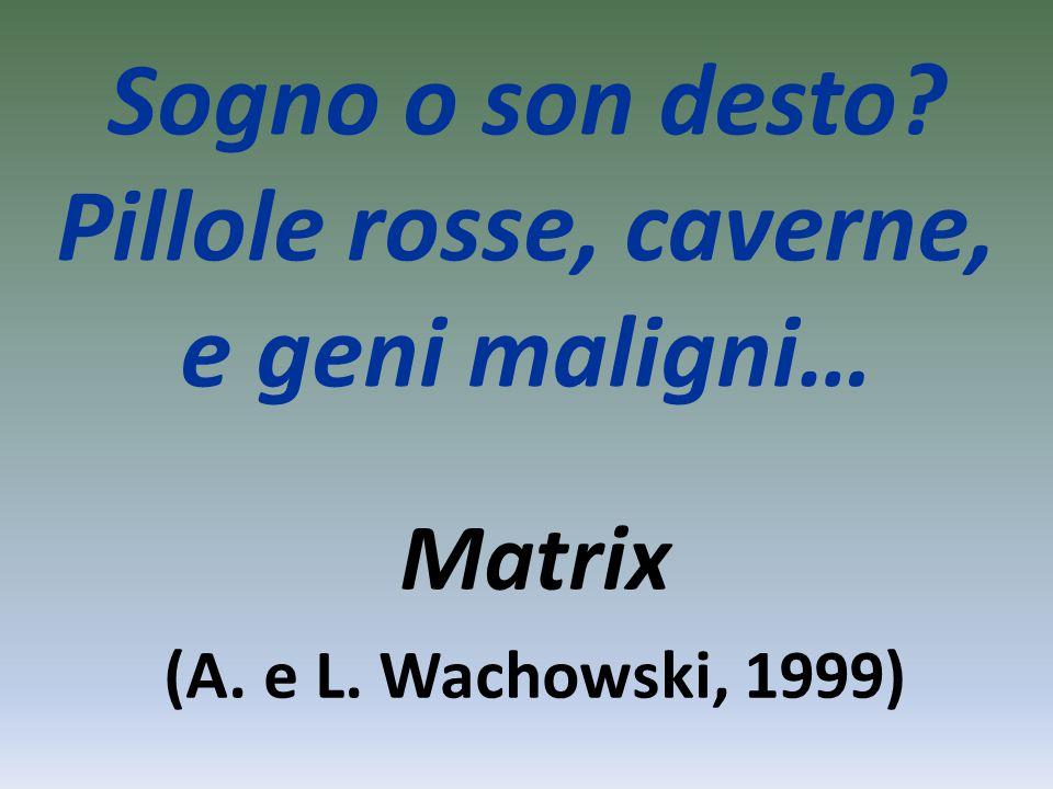 Sogno o son desto Pillole rosse, caverne, e geni maligni… Matrix (A. e L. Wachowski, 1999)