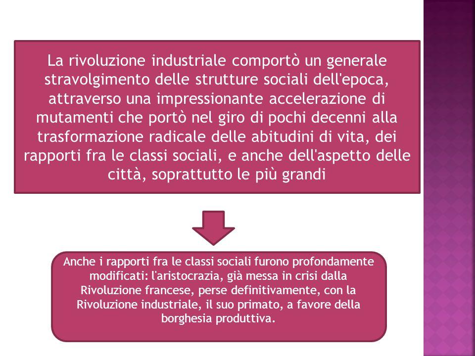 La rivoluzione industriale comportò un generale stravolgimento delle strutture sociali dell'epoca, attraverso una impressionante accelerazione di muta