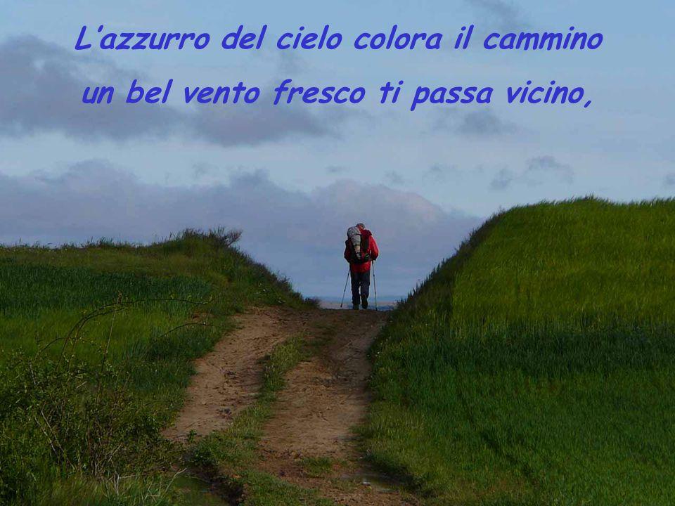 L'azzurro del cielo colora il cammino un bel vento fresco ti passa vicino,