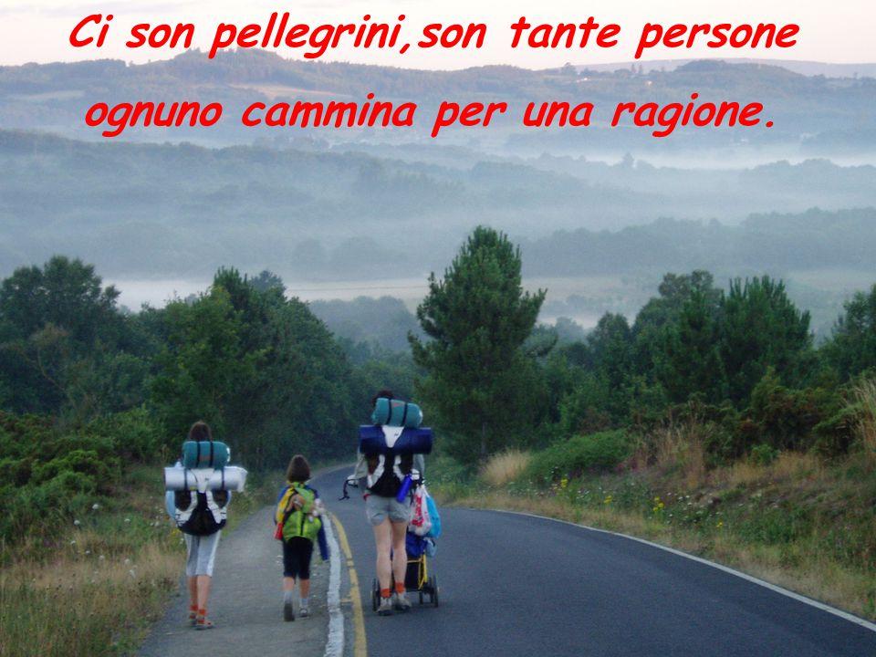 Ci son pellegrini,son tante persone ognuno cammina per una ragione.