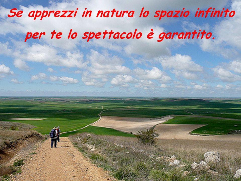 Se apprezzi in natura lo spazio infinito per te lo spettacolo è garantito.