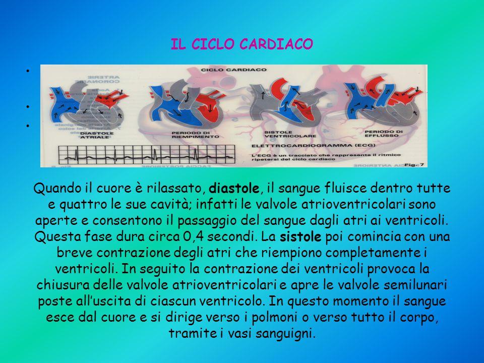 IL CICLO CARDIACO L'alternanza della contrazione e del rilassamento delle cavità cardiache costituisce il ciclo cardiaco La fase della contrazione è c