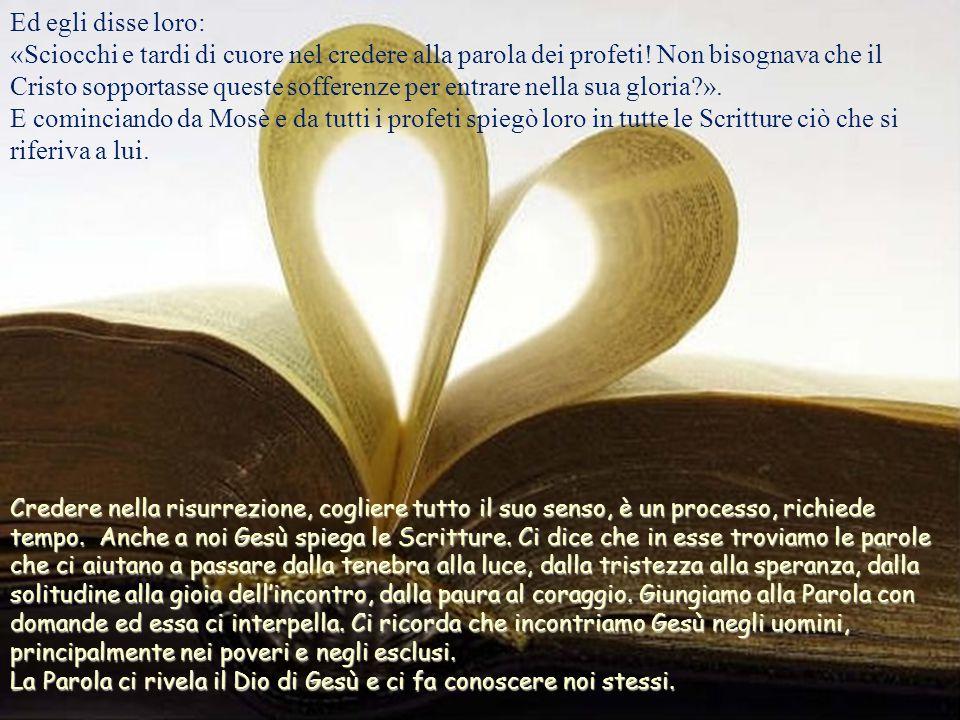 Ed egli disse loro: «Sciocchi e tardi di cuore nel credere alla parola dei profeti.