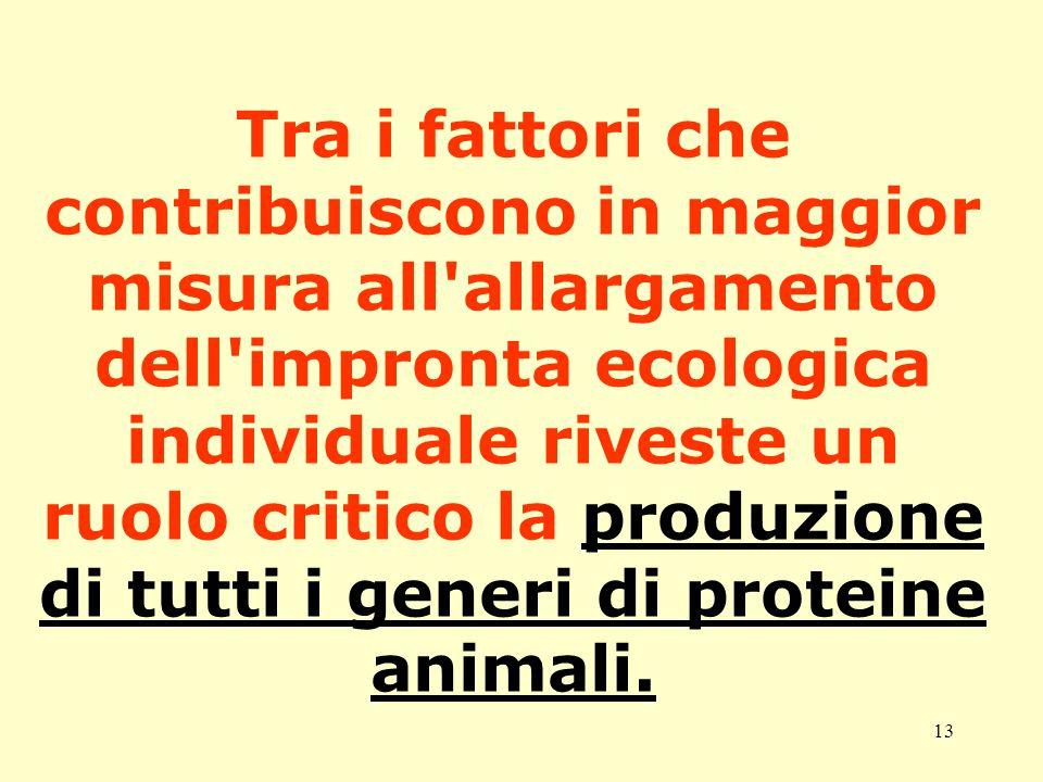 13 Tra i fattori che contribuiscono in maggior misura all allargamento dell impronta ecologica individuale riveste un ruolo critico la produzione di tutti i generi di proteine animali.