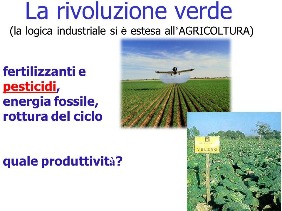 6 La rivoluzione verde (la logica industriale si è estesa all ' AGRICOLTURA) fertilizzanti e pesticidi, energia fossile, rottura del ciclo quale produttivit à
