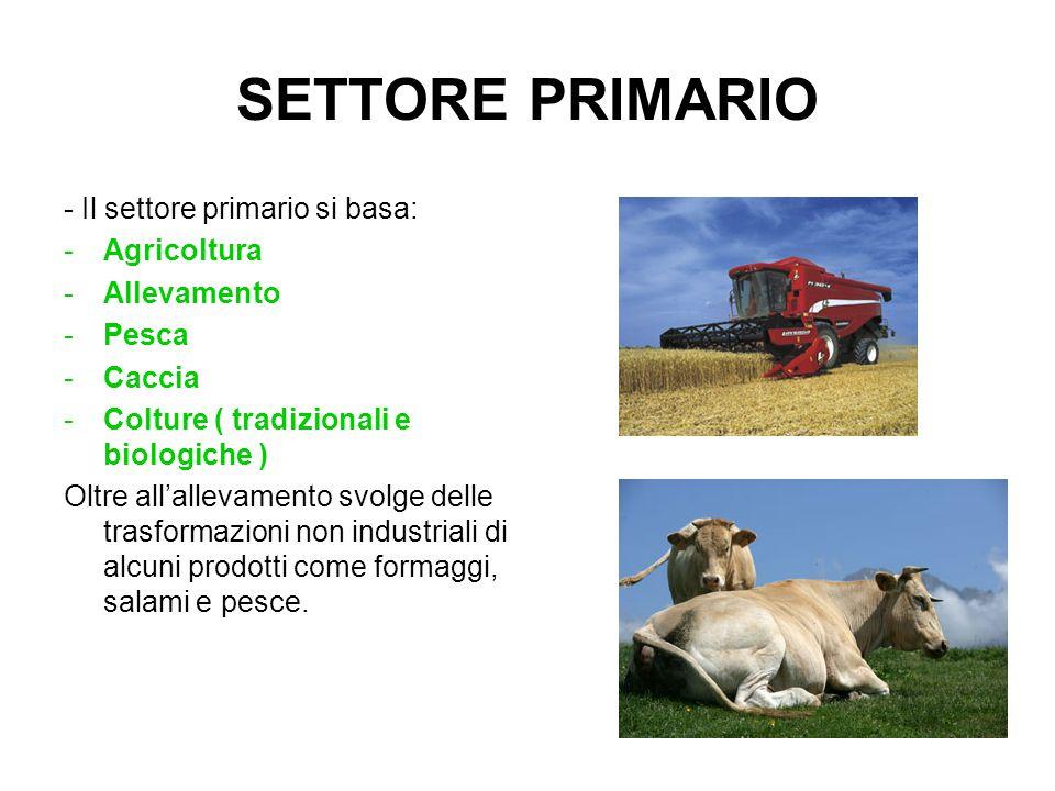 SETTORE SECONDARIO - Il settore Secondario si basa invece sulle industrie che producono tutti i beni ad eccezione di quella alimentare.