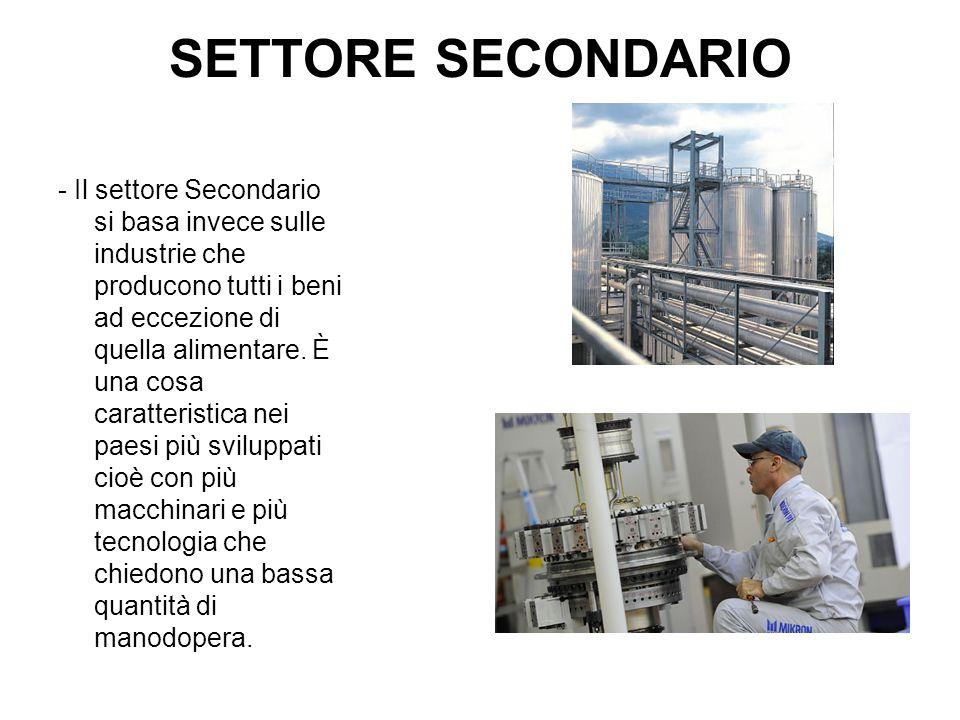 SETTORE TERZIARIO - Il settore Terziario è il settore in cui si producono servizi e comprende tutte le attività d'ausilio del settore primario e secondario che vanno sotto il nome di servizi.