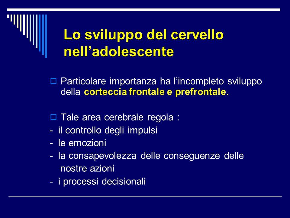 Lo sviluppo del cervello nell'adolescente  Particolare importanza ha l'incompleto sviluppo della corteccia frontale e prefrontale.  Tale area cerebr