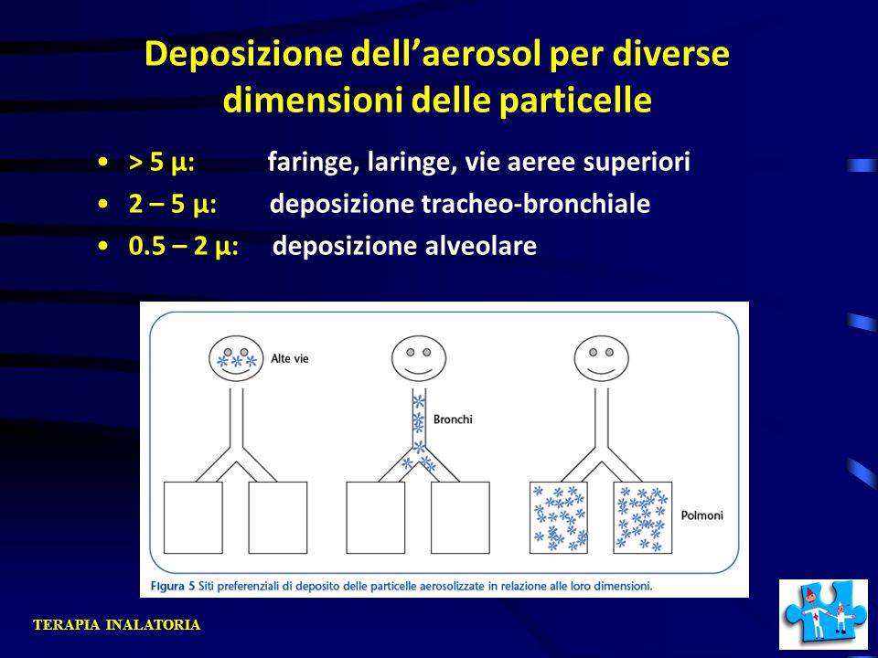 Deposizione dell'aerosol per diverse dimensioni delle particelle > 5 µ: faringe, laringe, vie aeree superiori 2 – 5 µ: deposizione tracheo-bronchiale