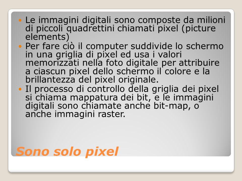 Sono solo pixel Le immagini digitali sono composte da milioni di piccoli quadrettini chiamati pixel (picture elements) Per fare ciò il computer suddiv