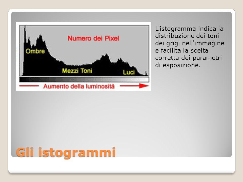 Gli istogrammi L'istogramma indica la distribuzione dei toni dei grigi nell'immagine e facilita la scelta corretta dei parametri di esposizione.