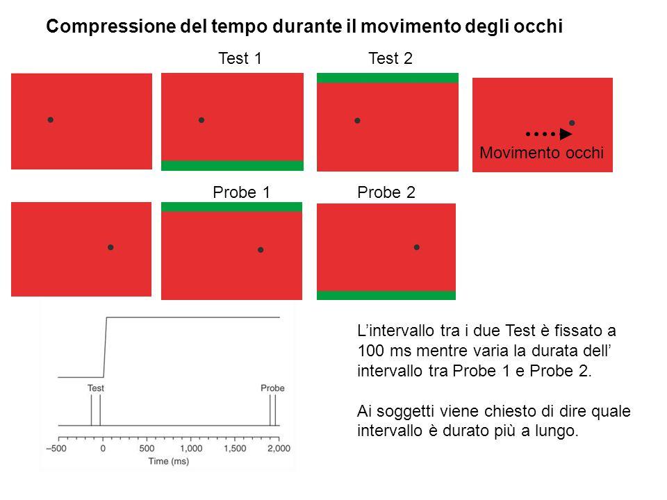 Test 1Test 2 Probe 2Probe 1 Movimento occhi L'intervallo tra i due Test è fissato a 100 ms mentre varia la durata dell' intervallo tra Probe 1 e Probe
