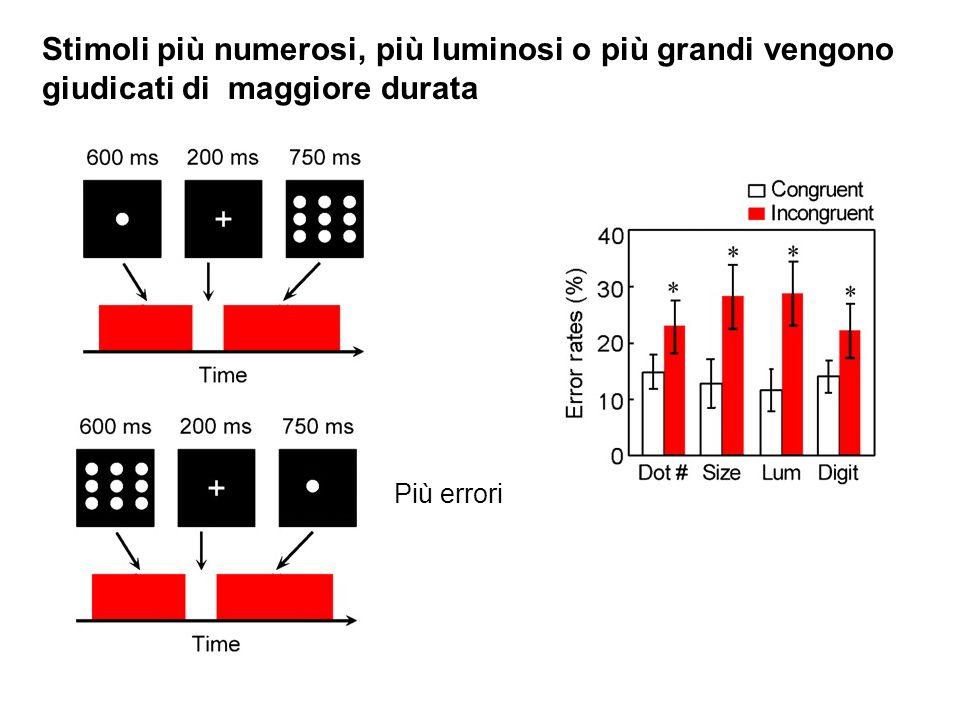 Stimoli più numerosi, più luminosi o più grandi vengono giudicati di maggiore durata Più errori