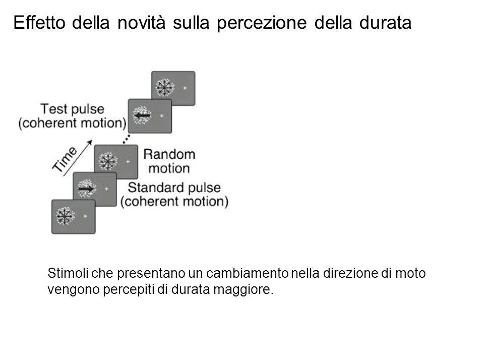 Stimoli che presentano un cambiamento nella direzione di moto vengono percepiti di durata maggiore. Effetto della novità sulla percezione della durata
