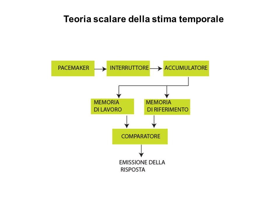 Teoria scalare della stima temporale