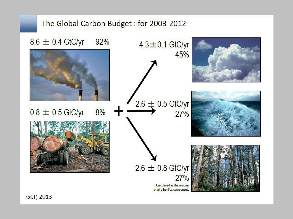 A proposito di biossido di carbonio in atmosfera