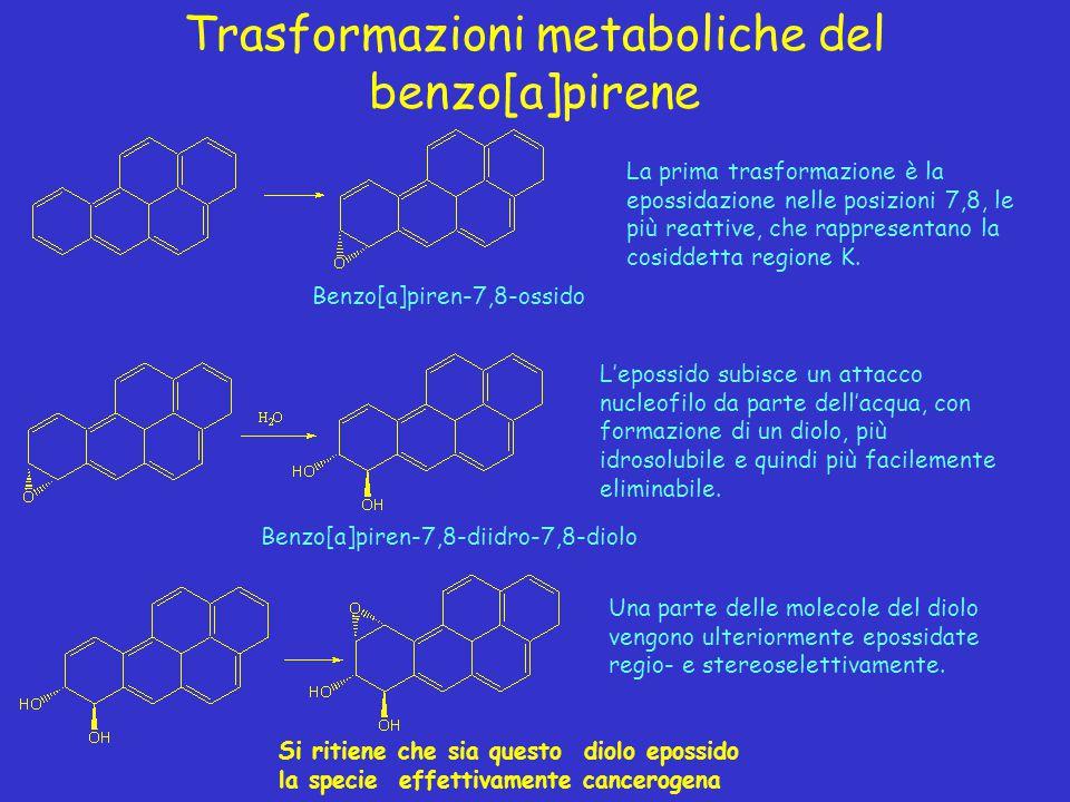 Trasformazioni metaboliche del benzo[a]pirene La prima trasformazione è la epossidazione nelle posizioni 7,8, le più reattive, che rappresentano la co