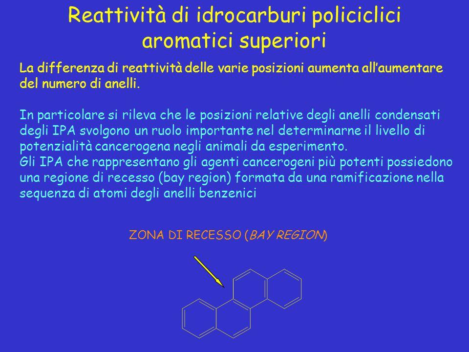 Reattività di idrocarburi policiclici aromatici superiori La differenza di reattività delle varie posizioni aumenta all'aumentare del numero di anelli