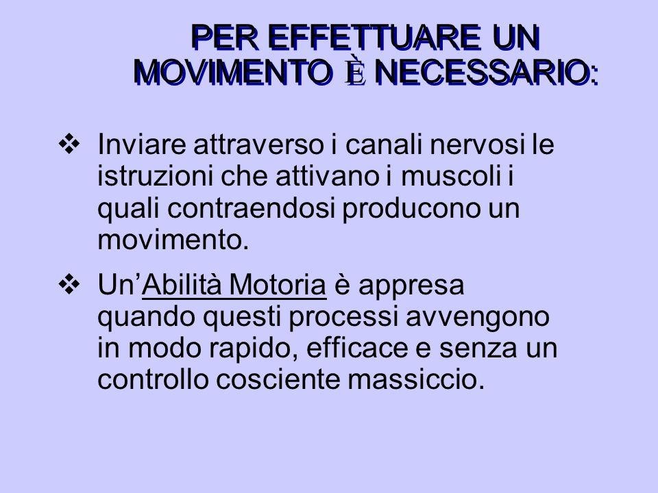 PER EFFETTUARE UN MOVIMENTO È NECESSARIO:  Inviare attraverso i canali nervosi le istruzioni che attivano i muscoli i quali contraendosi producono un movimento.