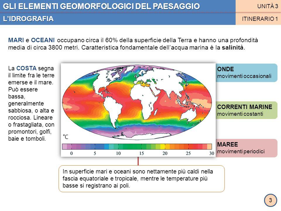 MAREE movimenti periodici CORRENTI MARINE movimenti costanti ONDE movimenti occasionali In superficie mari e oceani sono nettamente più caldi nella fa