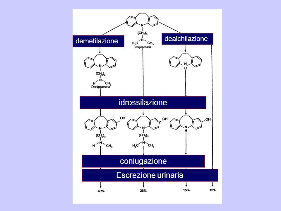 demetilazione dealchilazione idrossilazione coniugazione Escrezione urinaria