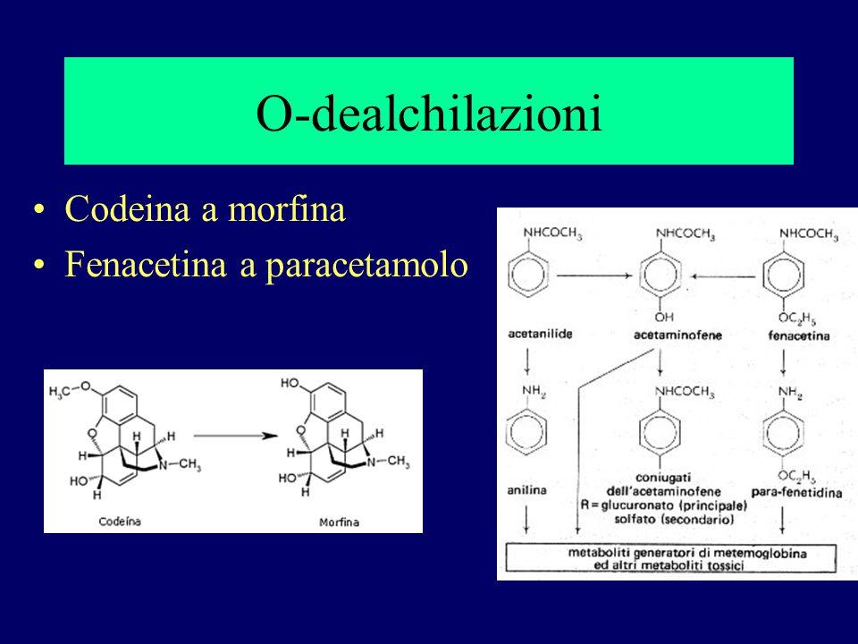 O-dealchilazioni Codeina a morfina Fenacetina a paracetamolo