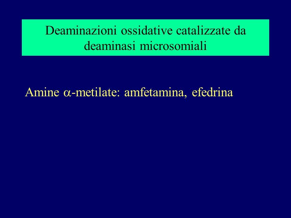 Deaminazioni ossidative catalizzate da deaminasi microsomiali Amine  -metilate: amfetamina, efedrina