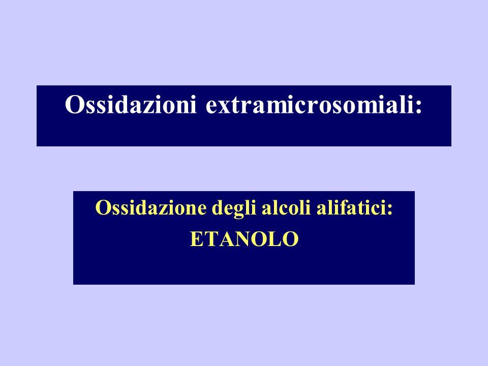 Ossidazione degli alcoli alifatici: ETANOLO Ossidazioni extramicrosomiali: