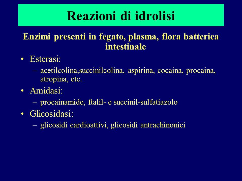 Reazioni di idrolisi Enzimi presenti in fegato, plasma, flora batterica intestinale Esterasi: –acetilcolina,succinilcolina, aspirina, cocaina, procain