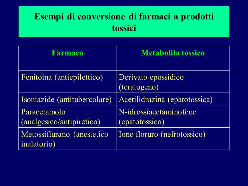 Esempi di conversione di farmaci a prodotti tossici FarmacoMetabolita tossico Fenitoina (antiepilettico)Derivato epossidico (teratogeno) Isoniazide (a