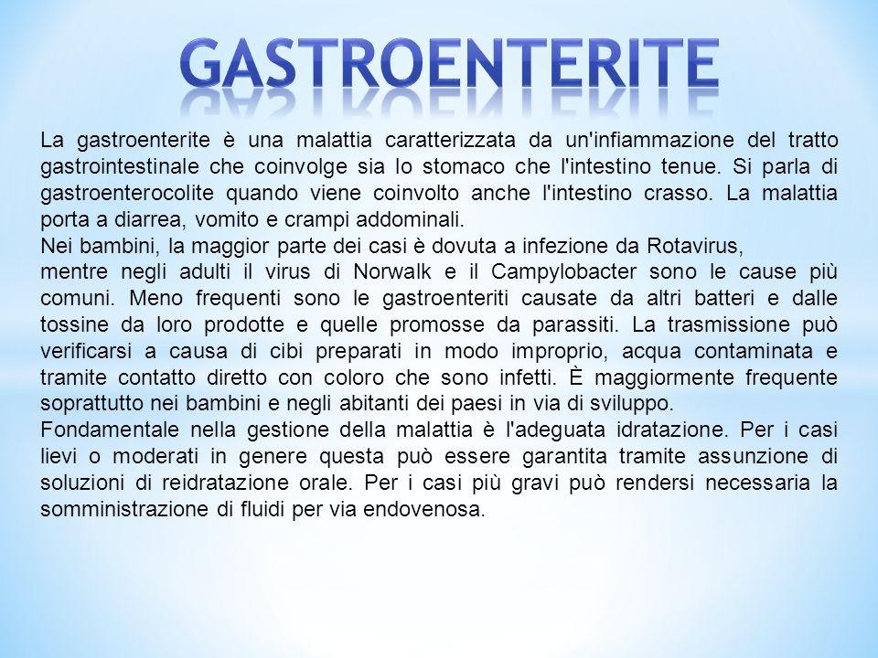 La gastroenterite è una malattia caratterizzata da un'infiammazione del tratto gastrointestinale che coinvolge sia lo stomaco che l'intestino tenue. S