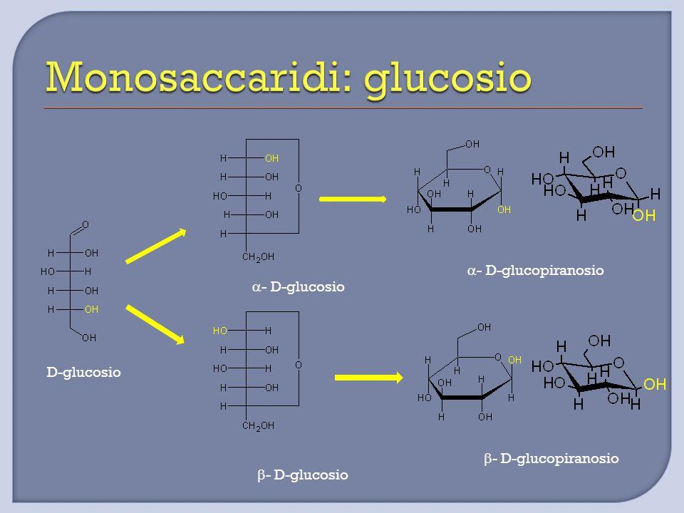 D-glucosio  - D-glucosio  - D-glucosio  - D-glucopiranosio  - D-glucopiranosio