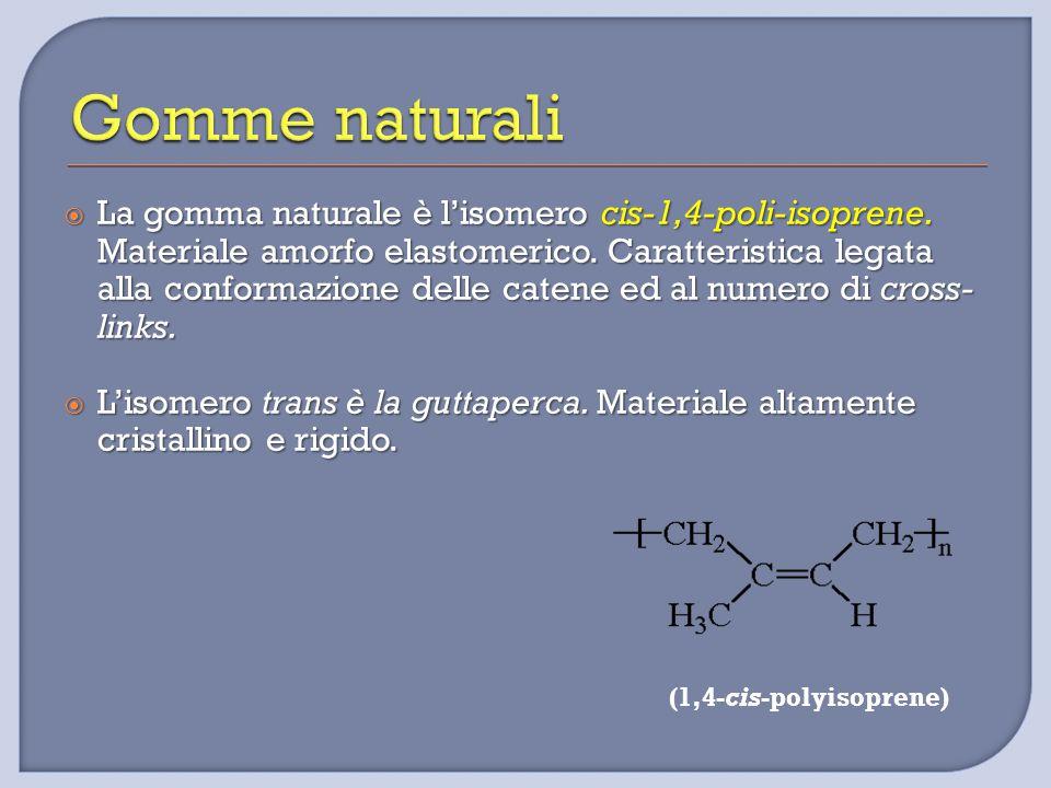  La gomma naturale è l'isomero cis-1,4-poli-isoprene. Materiale amorfo elastomerico. Caratteristica legata alla conformazione delle catene ed al nume