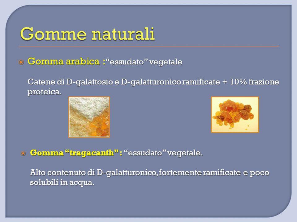  Gomma arabica : essudato vegetale Catene di D-galattosio e D-galatturonico ramificate + 10% frazione proteica.