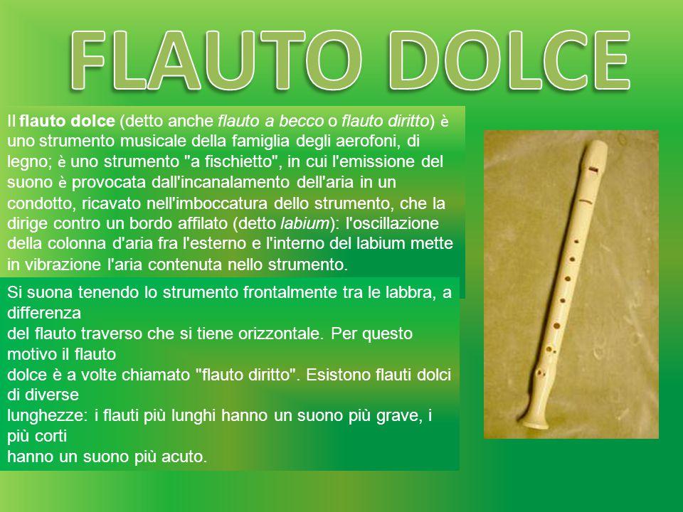 Il flauto dolce (detto anche flauto a becco o flauto diritto) è uno strumento musicale della famiglia degli aerofoni, di legno; è uno strumento
