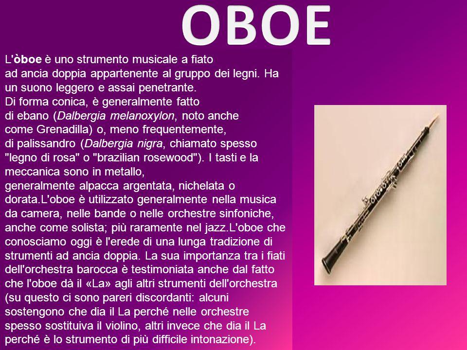 L'òboe è uno strumento musicale a fiato ad ancia doppia appartenente al gruppo dei legni. Ha un suono leggero e assai penetrante. Di forma conica, è g