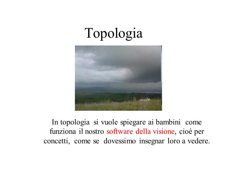 Topologia In topologia si vuole spiegare ai bambini come funziona il nostro software della visione, cioè per concetti, come se dovessimo insegnar loro a vedere.