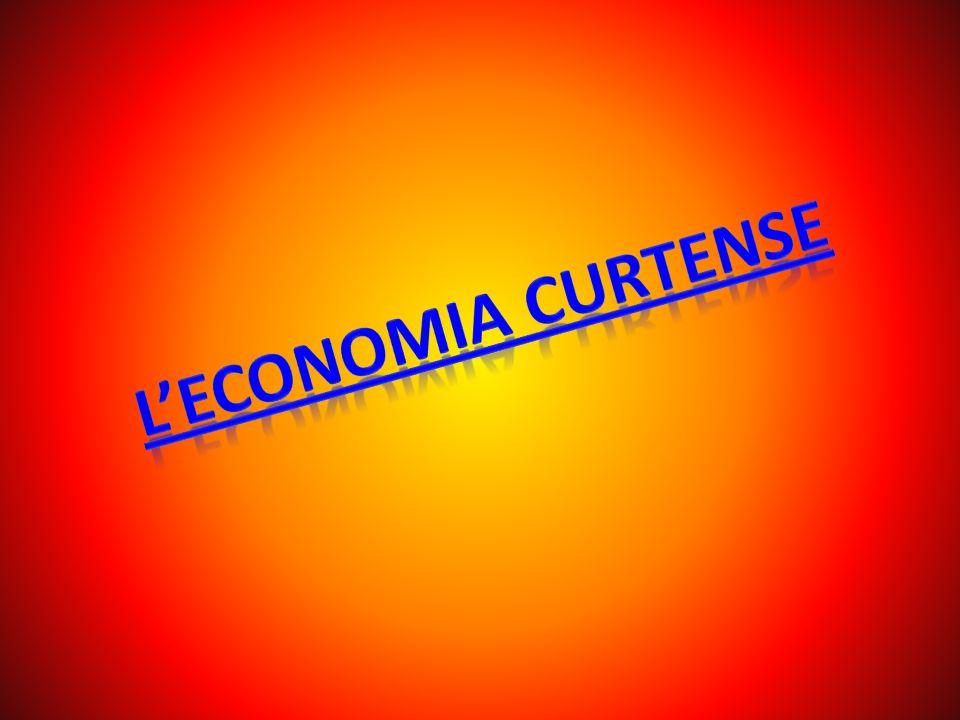 L economia curtense, era, generalmente, di sussistenza, si tendeva cioè a produrre il più possibile all interno del feudo in un ottica di autoconsumo.