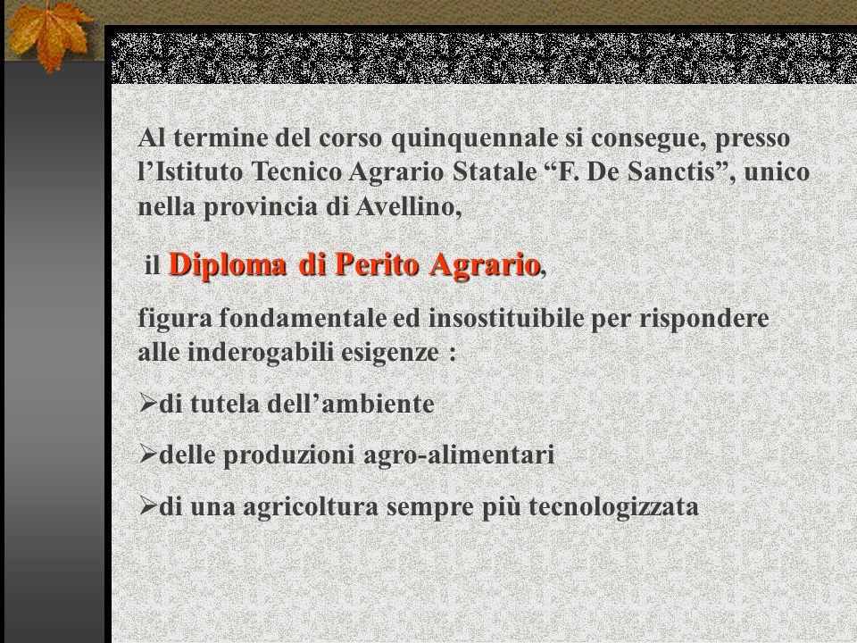 Al termine del corso quinquennale si consegue, presso l'Istituto Tecnico Agrario Statale F.
