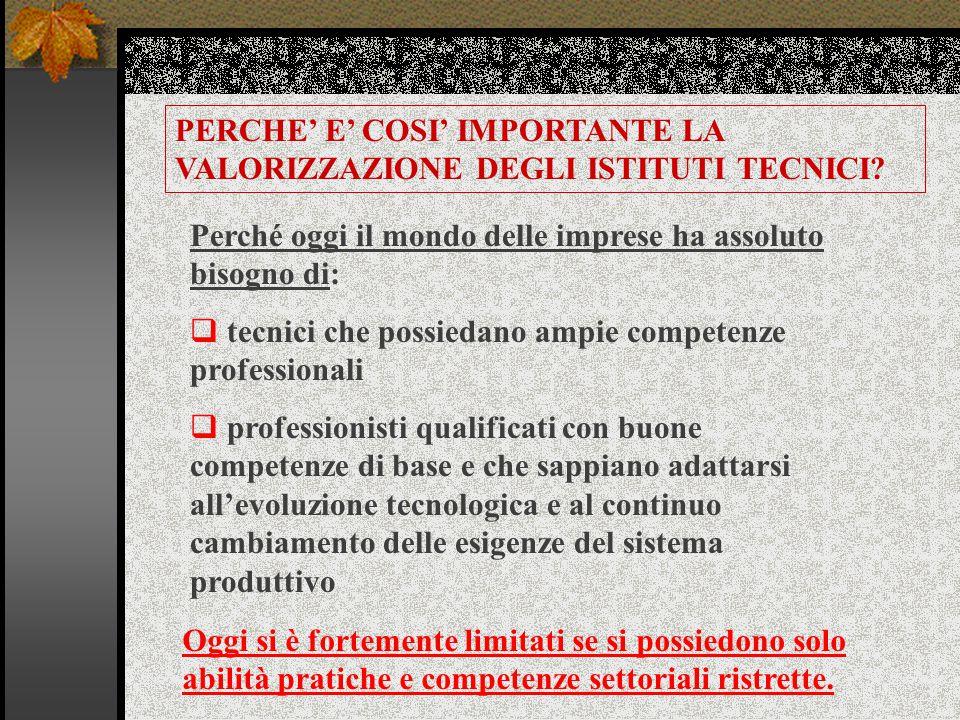 PERCHE' E' COSI' IMPORTANTE LA VALORIZZAZIONE DEGLI ISTITUTI TECNICI.
