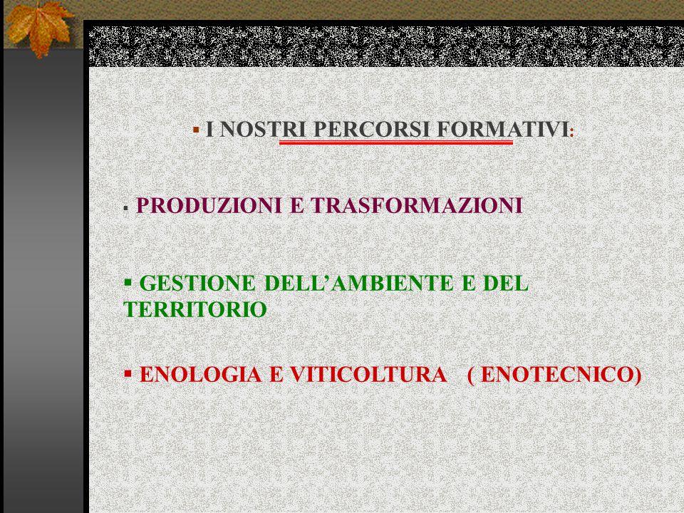  I NOSTRI PERCORSI FORMATIVI :  PRODUZIONI E TRASFORMAZIONI  GESTIONE DELL'AMBIENTE E DEL TERRITORIO  ENOLOGIA E VITICOLTURA ( ENOTECNICO)