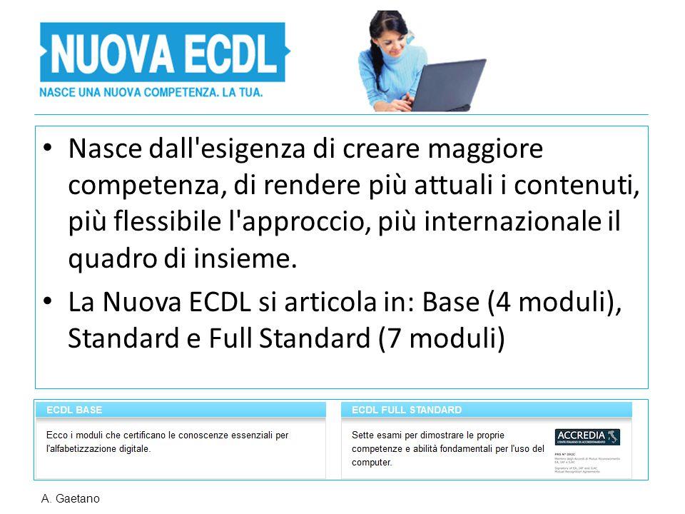 Nasce dall'esigenza di creare maggiore competenza, di rendere più attuali i contenuti, più flessibile l'approccio, più internazionale il quadro di ins