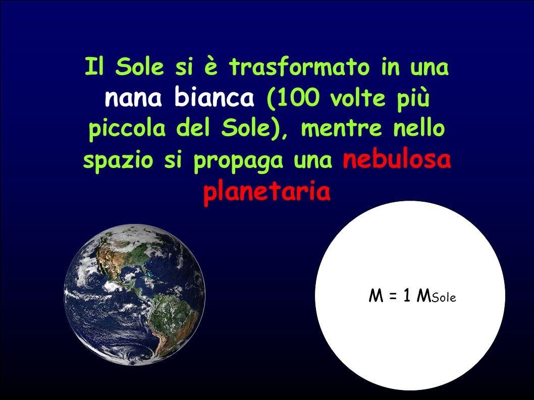 Il Sole si è trasformato in una nana bianca (100 volte più piccola del Sole), mentre nello spazio si propaga una nebulosa planetaria M = 1 M Sole