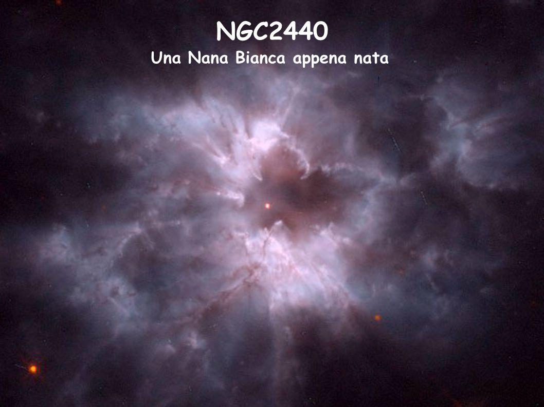NGC2440 Una Nana Bianca appena nata