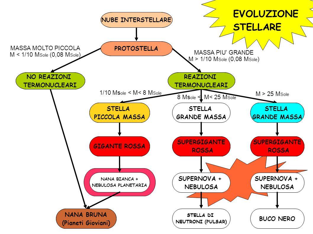 EVOLUZIONE STELLARE NUBE INTERSTELLARE PROTOSTELLA NO REAZIONI TERMONUCLEARI REAZIONI TERMONUCLEARI STELLA PICCOLA MASSA STELLA GRANDE MASSA STELLA GRANDE MASSA NANA BRUNA (Pianeti Gioviani) GIGANTE ROSSA NANA BIANCA + NEBULOSA PLANETARIA SUPERGIGANTE ROSSA SUPERGIGANTE ROSSA SUPERNOVA + NEBULOSA SUPERNOVA + NEBULOSA STELLA DI NEUTRONI (PULSAR) BUCO NERO MASSA MOLTO PICCOLA M < 1/10 M Sole (0,08 M Sole ) MASSA PIU GRANDE M > 1/10 M Sole (0,08 M Sole ) 1/10 Ms ole < M< 8 M Sole M > 25 M Sole 8 Ms ole < M< 25 M Sole NUBE INTERSTELLARE PROTOSTELLA NO REAZIONI TERMONUCLEARI NANA BRUNA (Pianeti Gioviani) REAZIONI TERMONUCLEARI STELLA PICCOLA MASSA GIGANTE ROSSA STELLA GRANDE MASSA SUPERGIGANTE ROSSA SUPERGIGANTE ROSSA