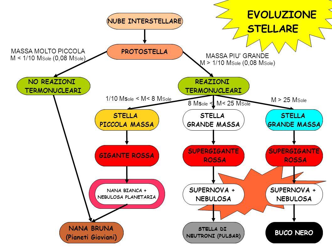 EVOLUZIONE STELLARE NUBE INTERSTELLARE PROTOSTELLA NO REAZIONI TERMONUCLEARI REAZIONI TERMONUCLEARI STELLA PICCOLA MASSA STELLA GRANDE MASSA STELLA GRANDE MASSA NANA BRUNA (Pianeti Gioviani) GIGANTE ROSSA NANA BIANCA + NEBULOSA PLANETARIA SUPERGIGANTE ROSSA SUPERGIGANTE ROSSA SUPERNOVA + NEBULOSA SUPERNOVA + NEBULOSA STELLA DI NEUTRONI (PULSAR) BUCO NERO MASSA MOLTO PICCOLA M < 1/10 M Sole (0,08 M Sole ) MASSA PIU GRANDE M > 1/10 M Sole (0,08 M Sole ) 1/10 Ms ole < M< 8 M Sole M > 25 M Sole 8 Ms ole < M< 25 M Sole NUBE INTERSTELLARE PROTOSTELLA NO REAZIONI TERMONUCLEARI NANA BRUNA (Pianeti Gioviani) REAZIONI TERMONUCLEARI STELLA PICCOLA MASSA GIGANTE ROSSA STELLA GRANDE MASSA SUPERGIGANTE ROSSA SUPERGIGANTE ROSSA STELLA DI NEUTRONI (PULSAR) BUCO NERO